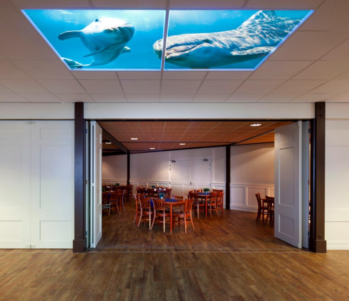 Faux plafond led illusion sous l'océan