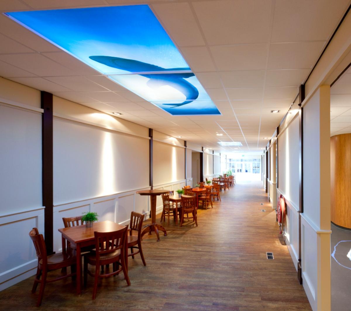 Plafond LED lumineux pour espace de passage